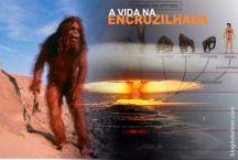 AVidaNaEncruzilhada-1b