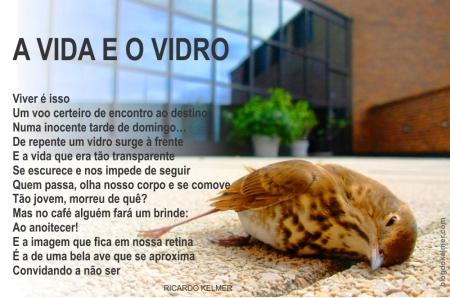 AVidaEOVidro-01c