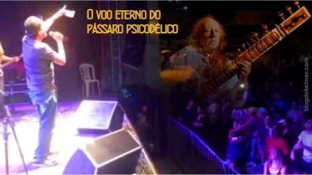 OVooEternoDoPassaroPsicodelico-01a